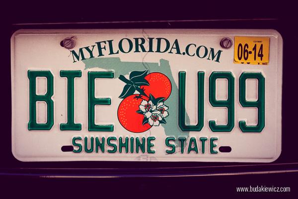rejstracja samochodowa na florydzie