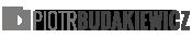 budakiewicz.com